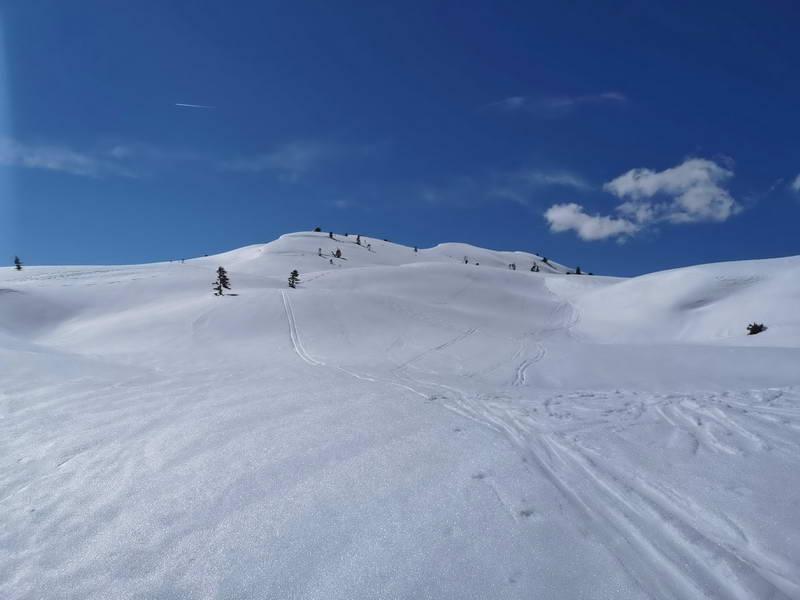 Nachdem wir die ersten Absätze nach dem Loassattel hinter uns haben, ist bald über dem sanft gewellten Gelände die Gipfelkuppe mit dem kleinen Kreuz  in Sicht. Ein wunderschönes Schneeschuhgelände!