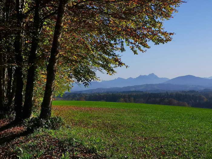 Bis nach Gotzing fällt der Blick immer wieder auf die Alpenkette.