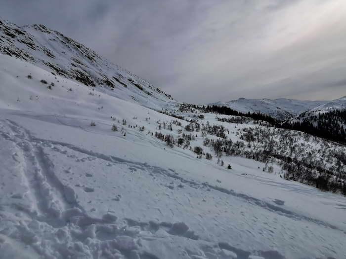 Der ideale Skihang, Standpunkt der Naunzalm-Hochleger