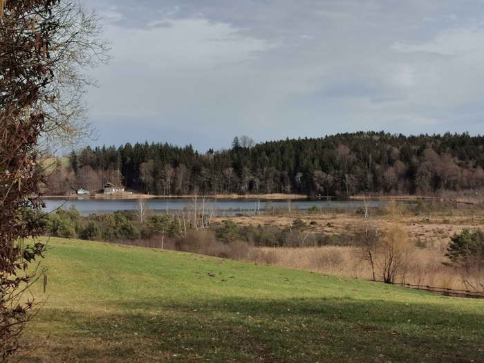 Das südöstliche Ende des Sees, gesehen vom Weiler Hofstätt aus.