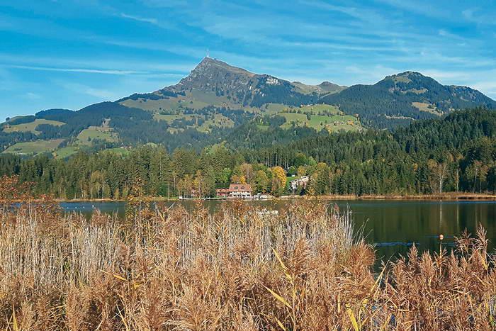 Am Schwarzsee
