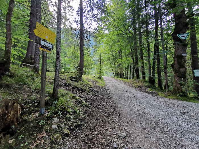 Hier fahren wir links zur Niederhofer Alm (rechts Soinsee)