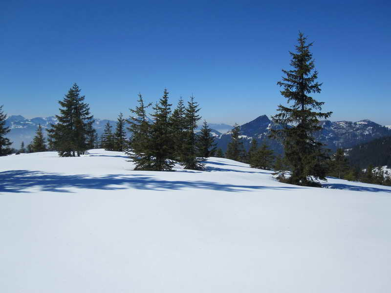 Der flache, unberührte Gipfel des Hochköpfl. Foto © Eli