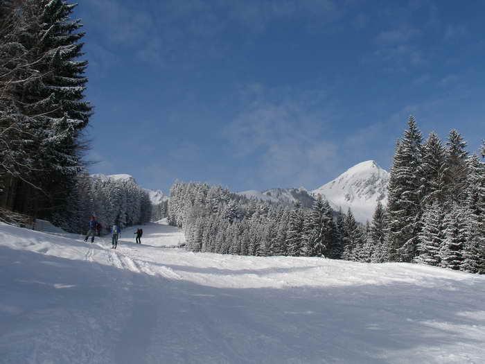 Auf der ehemaligen Skipiste: links Breitenstein, rechts Geigelstein