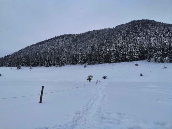 Von der Schlipfgrubalm der Blick zum Sulzberg