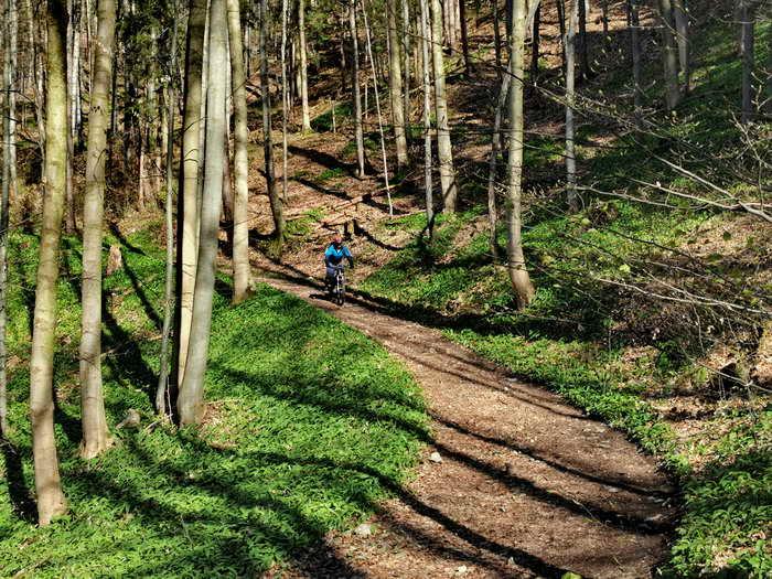 Auf der Abfahrt im Mittelteil des Trails
